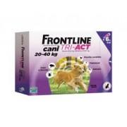Merial Italia Frontline Tri act soluzione antiparassitario spot on per cani da 20 a 40kg (6 pipette)
