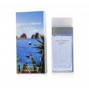 Dolce & Gabbana Light Blue Love In Capri Eau De Toilette Spray 50ml