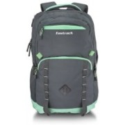 Fastrack A0743NGY01 21 L Laptop Backpack(Grey, Green)