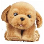 Little Live Pets Sleepy Puppy - Famosa