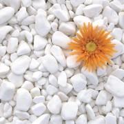 Pebble Marmura Alba Thassos 4-8 cm Sac 20 KG