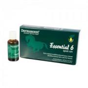 Dermoscent Essential 6 Spot-On Paard - 4x30ml