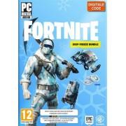 Nintendo Fortnite Deep Freeze Bundel PC Officiële Website Code