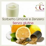 Officine Gastronomiche Sorbetto Limone e Zenzero 20 buste da 1 kg