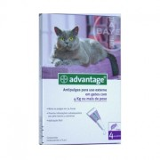 Advantage 80 Gato 4kg - 4 Pipetas - Bayer