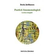 Poetica fenomenologica. Lectura imaginii/Dorin Stefanescu