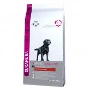 2х12кг Adult Breed Specific Labrador Retriever Eukanuba храна за кучета