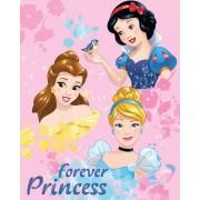 Disney Hercegnők polár takaró