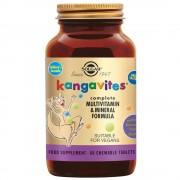 Solgar® Kangavites® Multivitamin- und Mineralformel Bouncing Berry
