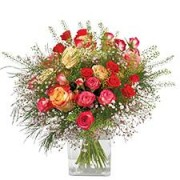 Interflora Rose cerise