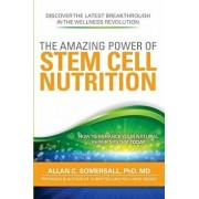The Amazing Power of Stem Cell Nutrition: How to Enhance Your Natural Repair System Today, Paperback/MD Dr Allan C. Somersall Phd