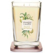 Yankee Candle Svíčka Yankee Candle Elevation - Citrus Grove (2 knoty)