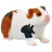 Porcusor de Guinea