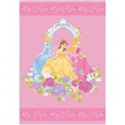 Covor copii Princess model 101 160x230 cm Disney