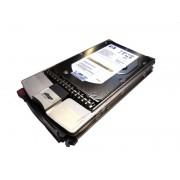 Hard Disk 3.5 inch , 300GB, 10K RPM, Fiber Channel, Dual Port , HP BD300DADFP