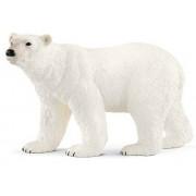 Ursul de urs