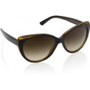 DKNY Cat-eye Sunglasses(Brown)