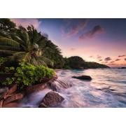 Puzzle Ravensburger - Praslin, Island in the Seychelles, 1.000 piese (15156)
