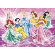 Puzzle Clementoni Disney Princess 2x20 Piese