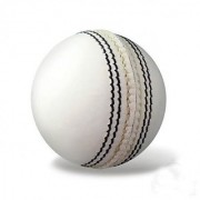 PARADISE COLLECTION SG 6 white Cricket Leather Ball (Pack of 6 Whit