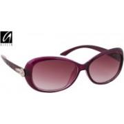 Aislin Over-sized Sunglasses(Violet)