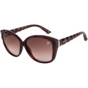 SWAROVSKI Retro Square Sunglasses(Brown)