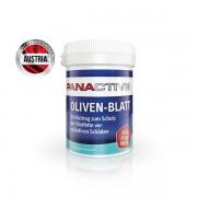 Panactive Oliven – Blatt 80 cps