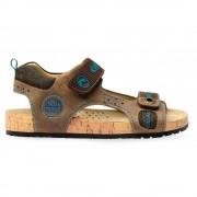 Sandale baieti maro J22E5B04510_C6089