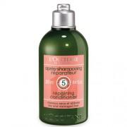 L`Occitane en Provence Kondicionér na suché a poškozené vlasy (Aromachologie Repairing Conditioner for Dry & Damaged Hair) 250 ml
