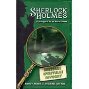 Misterul spiritului invocat, Sherlock Holmes si strengarii de pe Baker Street, Vol. 2/Tracy Mack, Michael Citrin