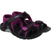 Puma Women Quarry-Puma Black-Hollyhock Sports Sandals
