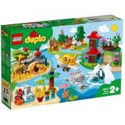LEGO DUPLO Town, Animalele lumii, 10907, 2+ (Brand: LEGO)