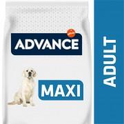Oferta 17+1 kg gratis Advance Maxi Adult pollo y arroz pienso para perros