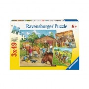Puzzle Ravensburger - Lumea cailor, 3 in 1, 3x49 piese