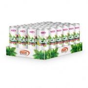 GAAM Nutrition 24 x GAAM Nutrition BCAA Drink, 330 ml, Pink Lemonade