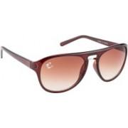 Clark N' Palmer Aviator Sunglasses(Brown)