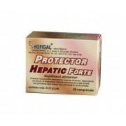 Protector Hepatic Forte, 40 comprimate, Hofigal