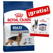 Royal Canin Size 4 a 15 kg pienso + 4 x 85/140 g sobres ¡gratis! - Maxi Adult 5+ (15 kg) + sobres Maxi Adult (4 x 140 g)