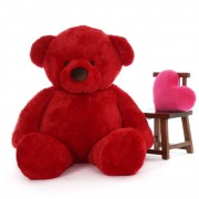 6 Feet Fat and Huge Red Teddy Bear