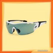 Arctica S-153 E Sunglasses