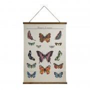 Xenos Vintage poster - vlinders - 50x70 cm