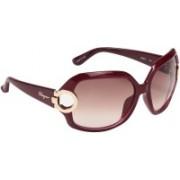 Salvatore Ferragamo Over-sized Sunglasses(Brown)