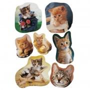Merkloos 63x Katten/poezen dieren stickers