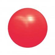 Bola para Pilates 55cm + Bomba de Inflar
