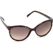 MTV Cat-eye Sunglasses(Brown)