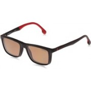 Carrera Retro Square Sunglasses(Brown)