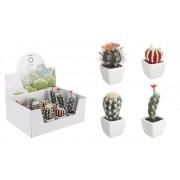 Set 4 plante suculente in ghiveci ceramica, cactus, multicolor