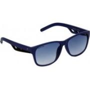 Fastrack Wayfarer Sunglasses(Blue)