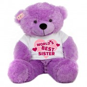 4 feet big brown teddy bear wearing Best Sister T-shirt