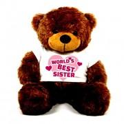 3 feet big brown teddy bear wearing Worlds Best Sister T-shirt